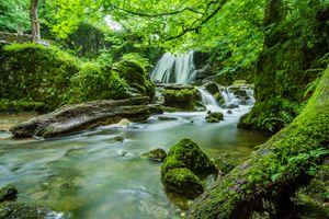 Йоркшир, историческое графство на севере Англии