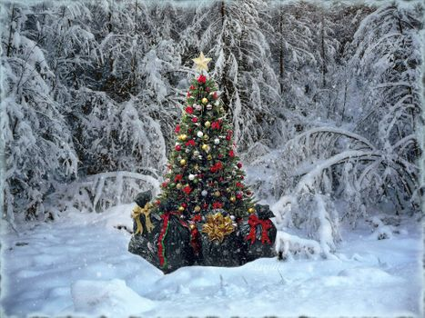 Photo free Merry Christmas, Christmas forest, snow