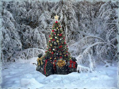 Фото бесплатно Merry Christmas, новогодний лес, снег