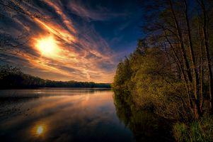 Фото бесплатно небо, природа, лес