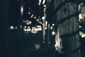 Фото бесплатно лампочка, боке, фотография