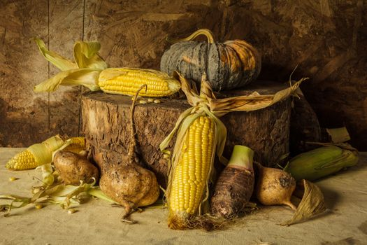 Corn and pumpkin · free photo
