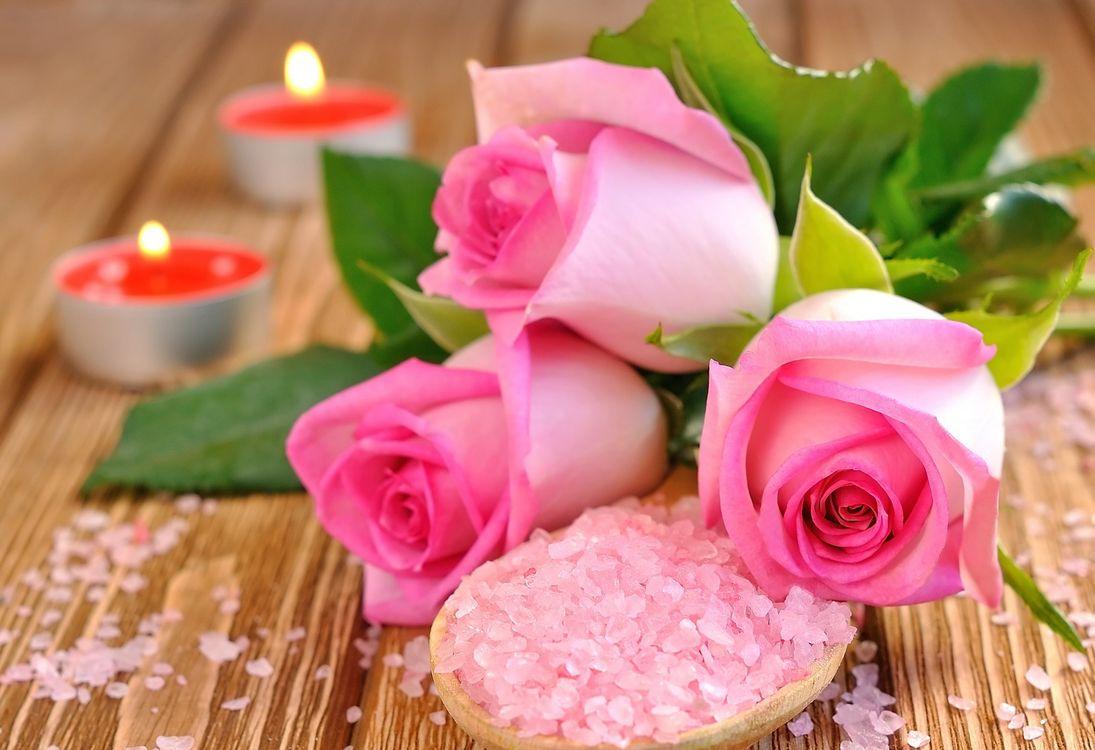 Фото бесплатно розы, букет, свечи, морская соль, роза, флора, розовый, цветы