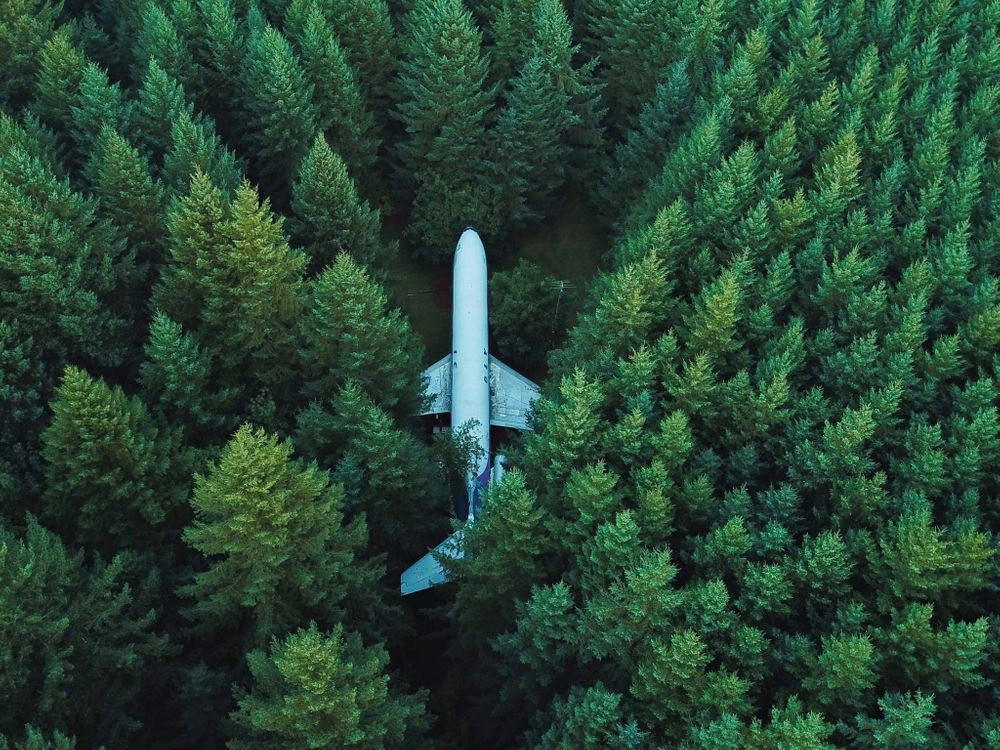 Photos for free Airplane, green, forest - to the desktop