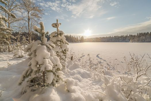 Photo free winter, Priozersky district, nature