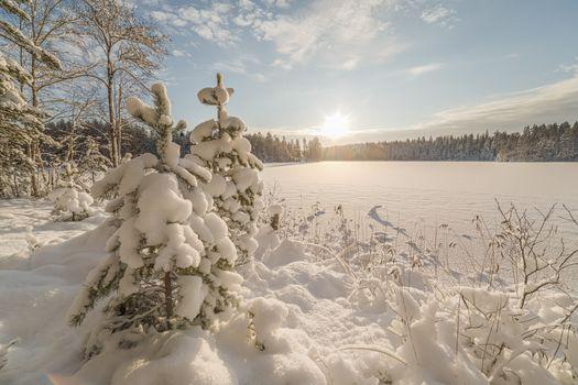 Фото бесплатно зима, Приозерский район, природа
