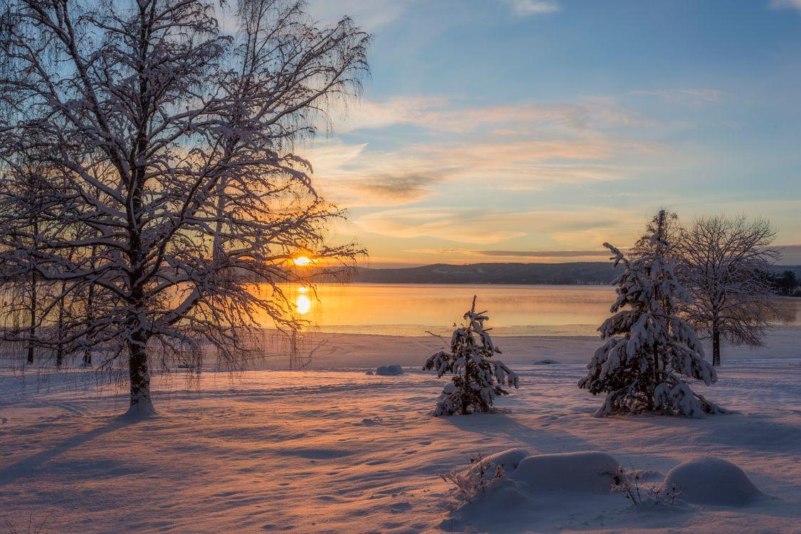 Обои Arvika, Швеция, зима, закат, снег, сугробы, водоём, солнечные лучи, деревья, природа, пейзаж на телефон   картинки пейзажи