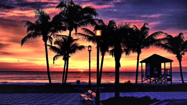 Заставки Beach, palms, sunset