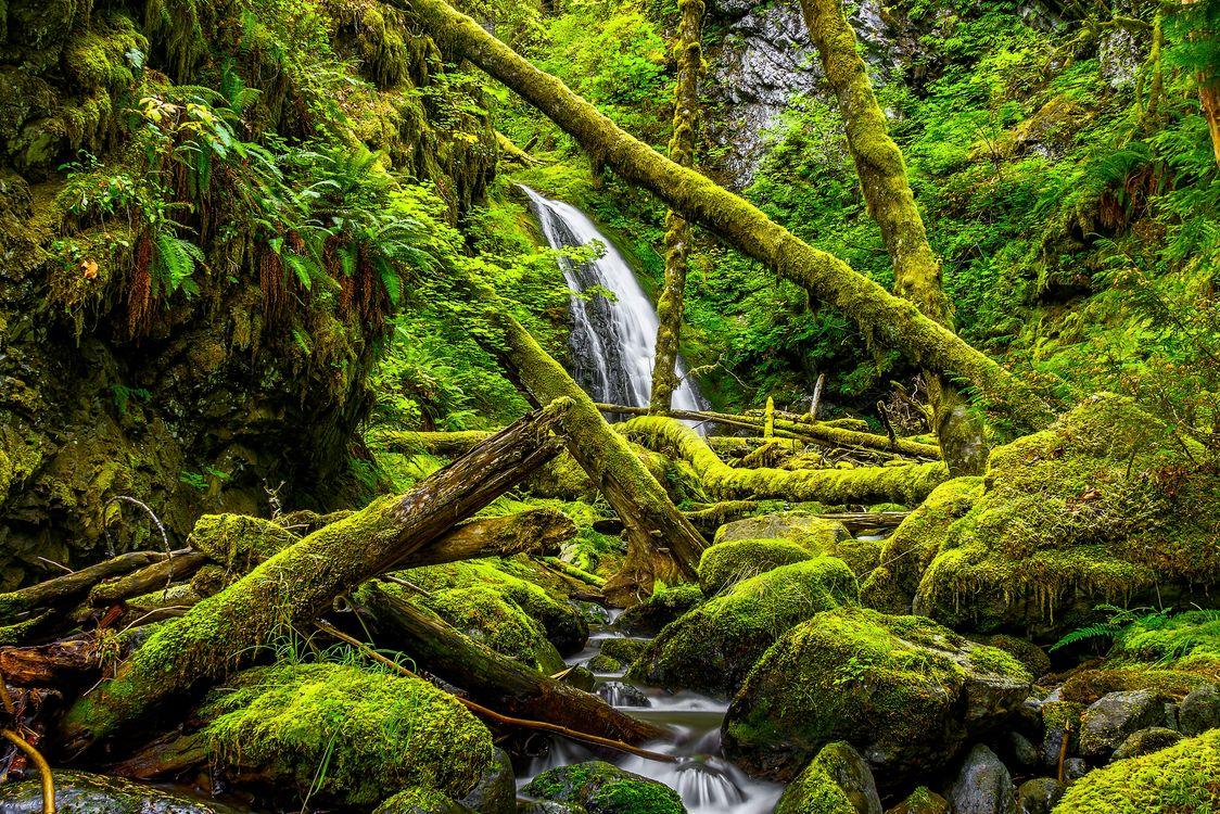 Фото бесплатно Falls, Washington, водопад - на рабочий стол