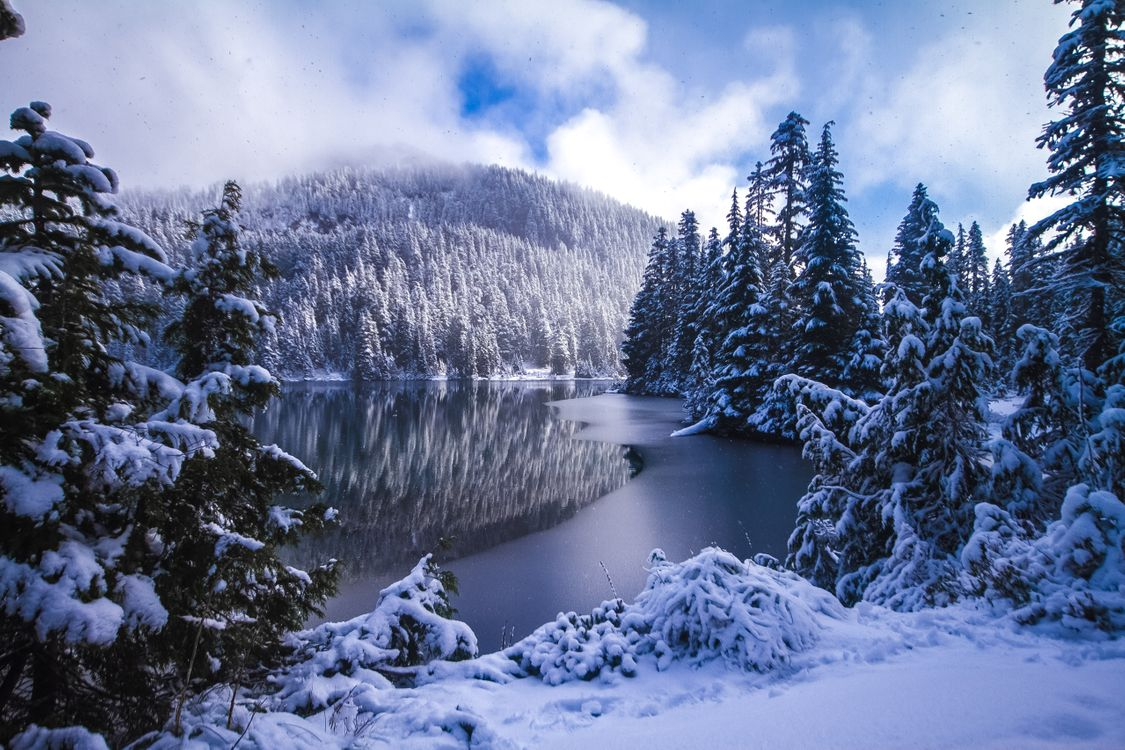 Фото бесплатно Mowich Lake, Mount Rainier National Park, Washington State - на рабочий стол
