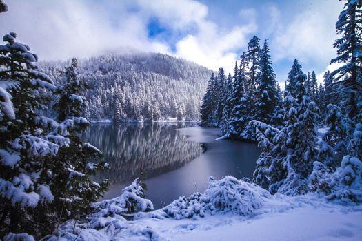Фото бесплатно Mowich Lake, Mount Rainier National Park, Washington State, USA, зима, горы, деревья, природа, пейзаж