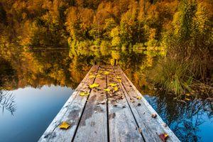 Бесплатные фото осень,озеро,мостик,причал,деревья,отражение,пейзаж
