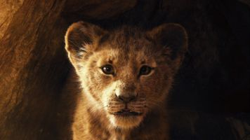Бесплатные фото Король лев,2019,disney,Симба,постер,львенок,пещера