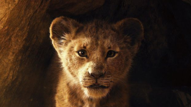 Заставки Король лев,2019,disney,Симба,постер,львенок,пещера,премьера летом 2019