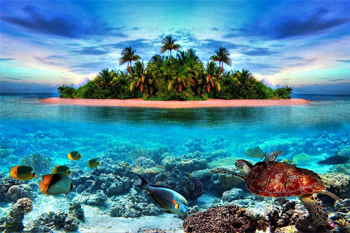Фото бесплатно Beautiful, tropical, island, пейзажи