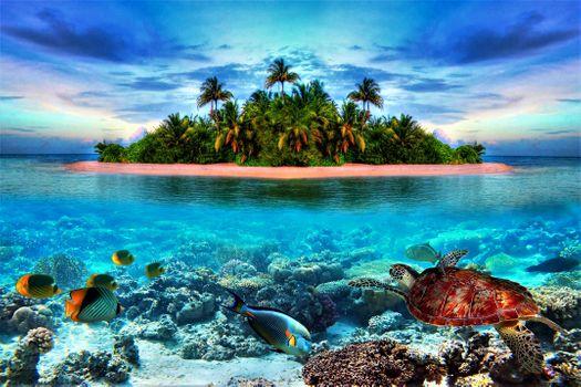 Бесплатные фото Beautiful,tropical,island