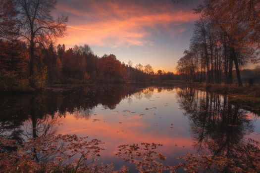 Near Moscow autumn evening · free photo