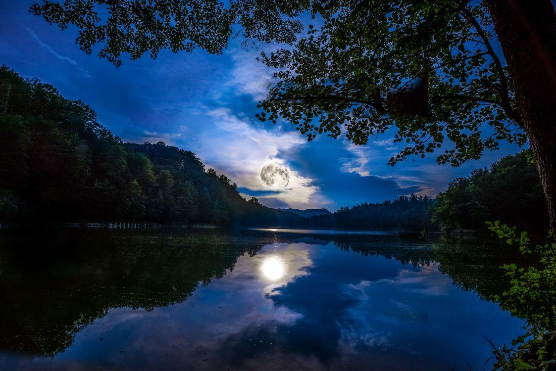 Фото бесплатно ночь, луна, озеро, отражение, Хорватия, деревья, небо, природа, пейзаж, пейзажи
