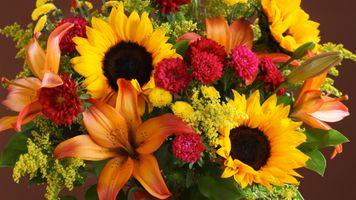 Фото бесплатно Цветочная композиция, букет, цветение