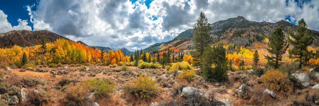Photo free South Fork of Bishop Creek, Eastern Sierra Falls, Foliage