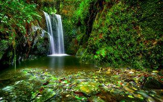 Бесплатные фото водопад,скалы,мох,растения,камни,водоём,природа