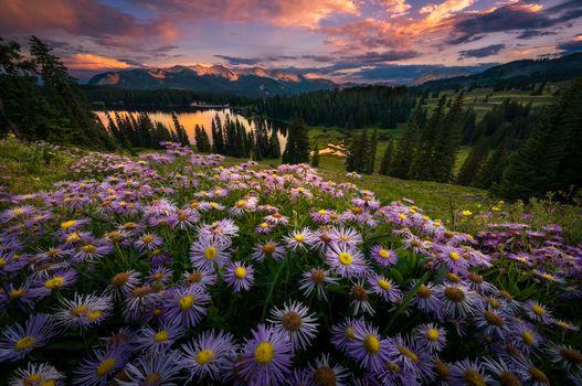 Фото бесплатно Gunnison, United States, Lake Irwin закат, озеро, холм, цветы, деревья, закат, пейзаж