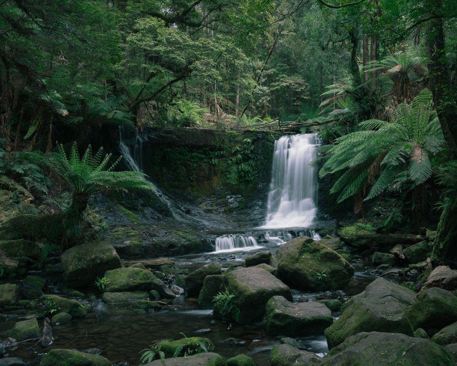 Обои Horseshoe Falls, Mt Field National Park, Tasmania, утро, ручей, валуны, ил картинки на телефон