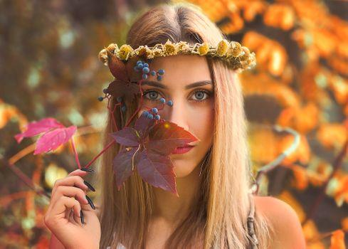 Glamour girl · free photo
