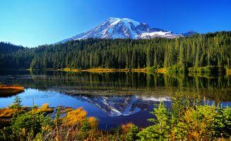 Бесплатные фото Reflection Lakes,Национальный парк Маунт-Рейнир,горы,озеро,лес,деревья,природа
