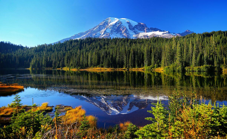 Обои Reflection Lakes, Национальный парк Маунт-Рейнир, горы, озеро, лес, деревья, природа, пейзаж на телефон | картинки пейзажи