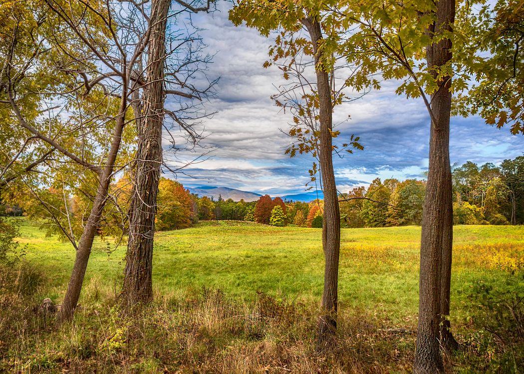 Фото бесплатно осень, поле, лес - на рабочий стол