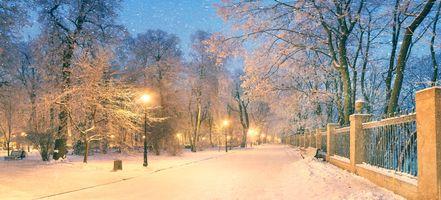 Бесплатные фото зимний парк,панорама,зима,парк,ночь,огни,фонари