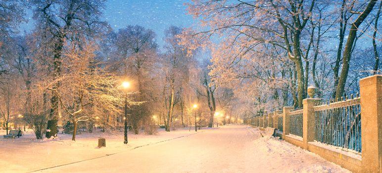 Фото бесплатно зимний парк, панорама, зима