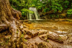 Бесплатные фото водопад,йоркшир,корни деревьев,мокрые камни,пейзаж,река,ручей