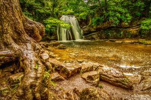 Фото бесплатно водопад, йоркшир, корни деревьев