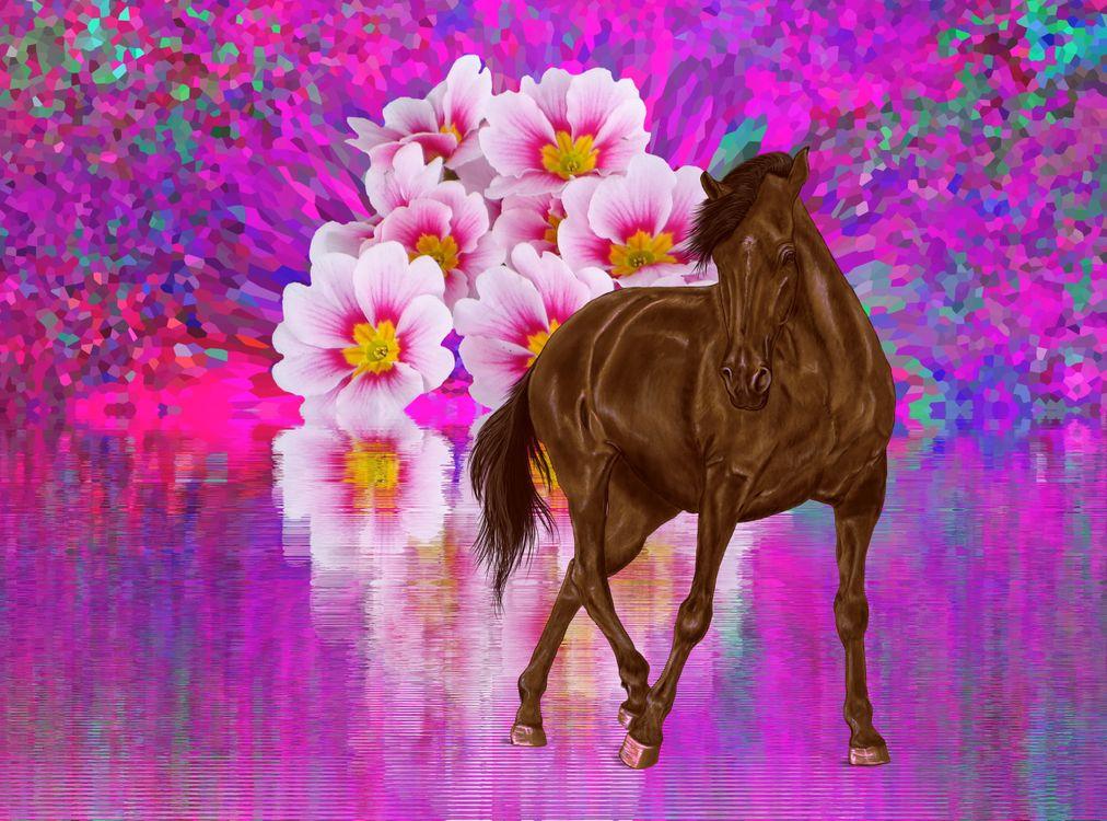 Фото бесплатно цветы, абстракция, лошадь, конь, фон, яркость, цвета, art, рендеринг