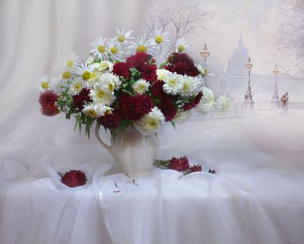 Photo free background, winter background, flowers