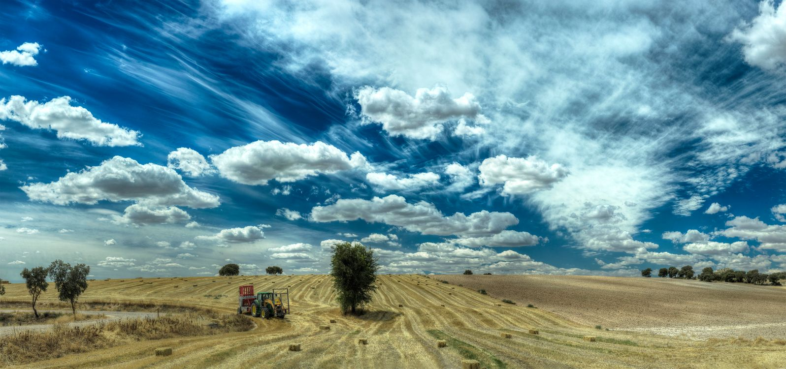 Фото бесплатно поле, небо, облака, урожай, осень, сено, трактор, холмы, дерево, пейзаж, пейзажи