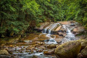 Фото бесплатно камни, природа, деревья