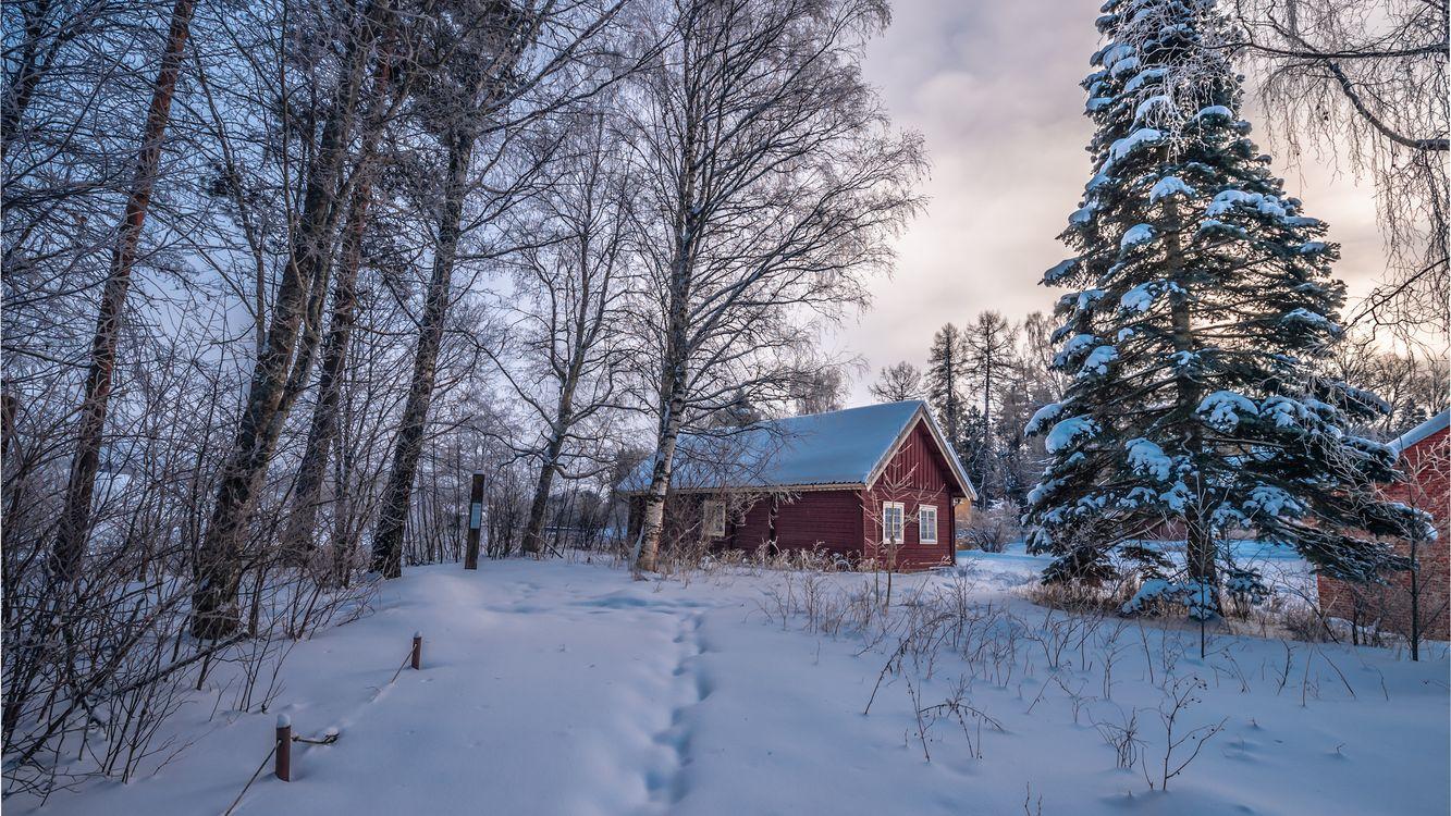 Фото бесплатно дом деревья следы - на рабочий стол