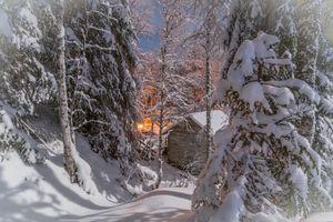 Фото бесплатно снег, дом, лес