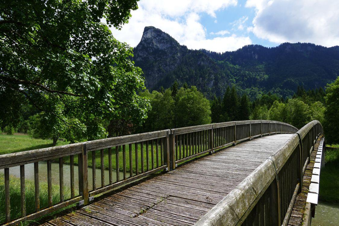 Фото бесплатно приключение, дощатый, мост - на рабочий стол