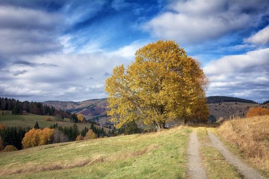 Photo free Bernau, Germany, autumn