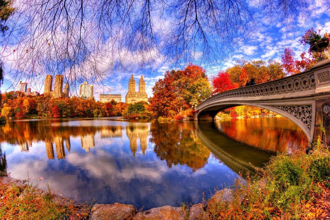 Фото бесплатно Центральный Парк, осень, Нью-Йорк, Боу-Бридж, Сан-Рино Башня, осень в городе, город
