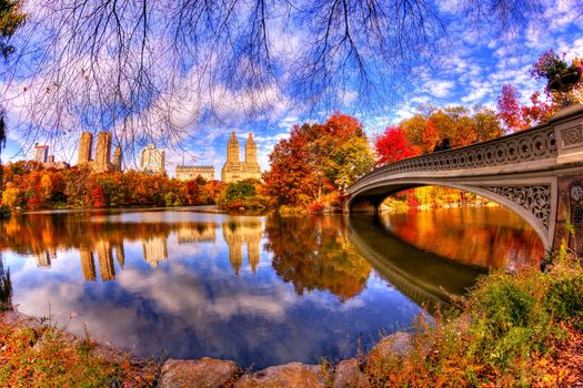 Photo free autumn in the city, autumn, Central Park