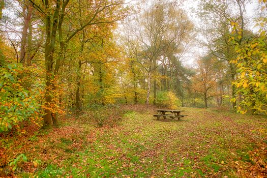 Photo free autumn, Park, table