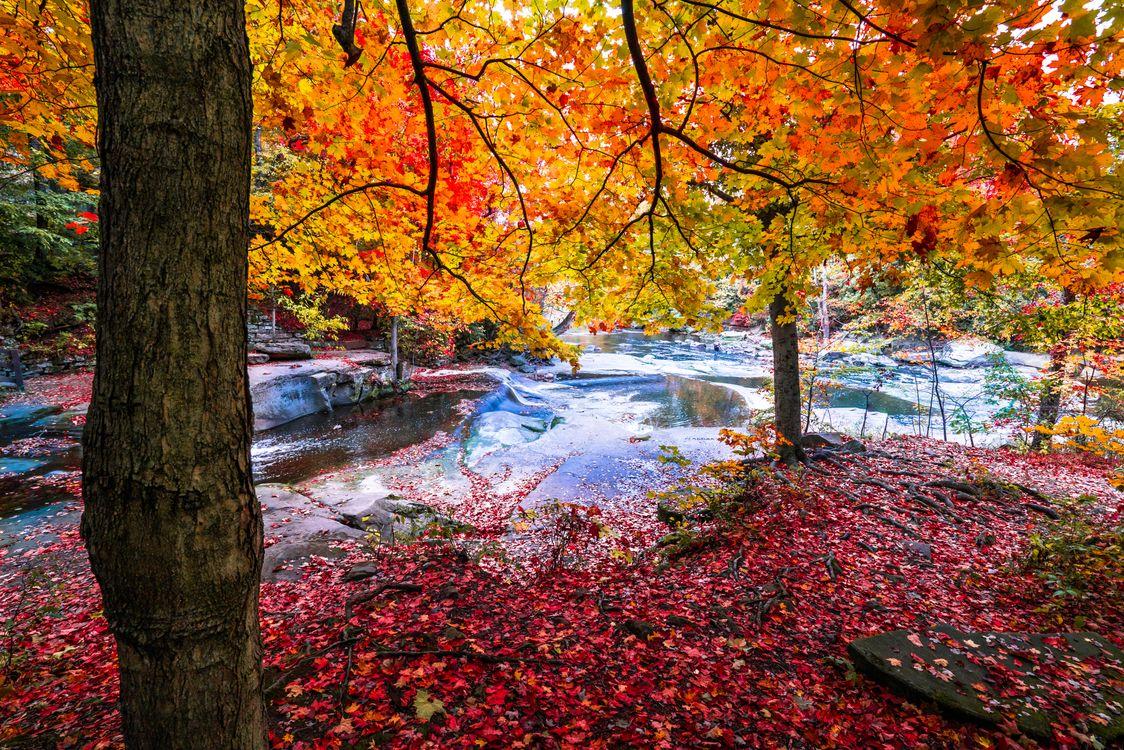 Фото бесплатно осень, скалистая местность, река - на рабочий стол