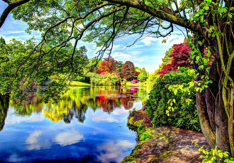 Фото бесплатно Пейзаж, Парк Шеффилда, Англия, озеро, пруд, водоём, деревья, яркий, природа, пейзаж, пейзажи