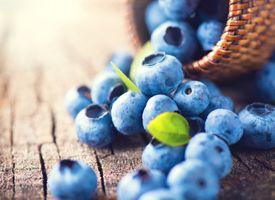 Россыпь ягод черники · бесплатное фото