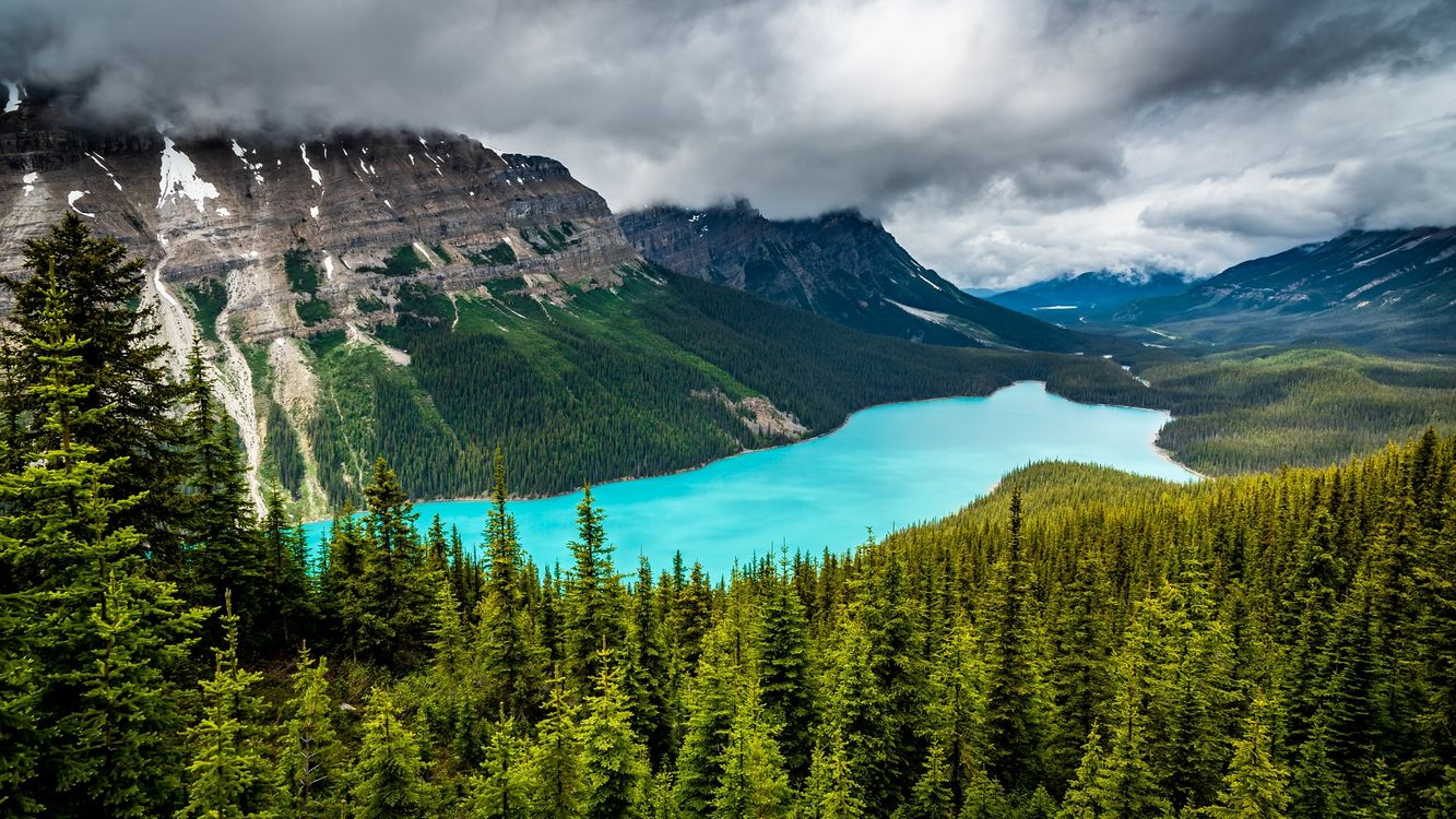 Peyto Lake Peyto Lake · free photo